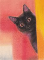 pastel painting of a black cat