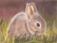 pastel painting of a rabbit